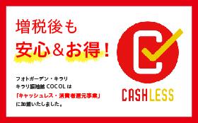 2019年10月1日より消費税増税に伴うご連絡、キャッシュレス消費者還元事業加盟のお知らせ